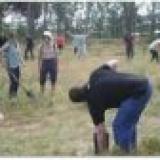 Plantações e Intervenções Ambientais